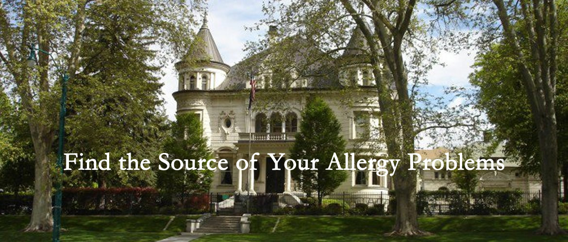 Find the Source of Your Allergy Problems
